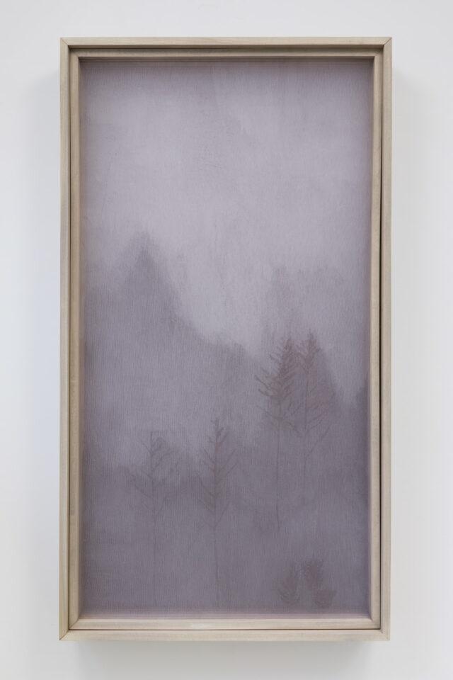 <em>After Image</em>, Kate Roberts